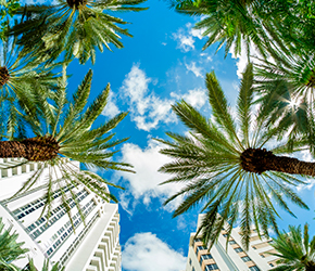 vuelo + hotel/de Bogotá a Miami
